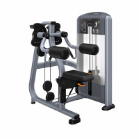 Discovery Series Lateral Raise DSL504