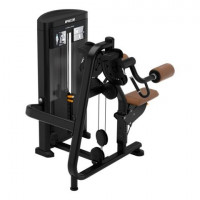 Resolute™ Strength Lateral Raise RSL0504